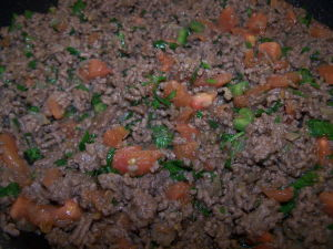 Beef with onion, garlic, tomato, jalapeno and cilantro.