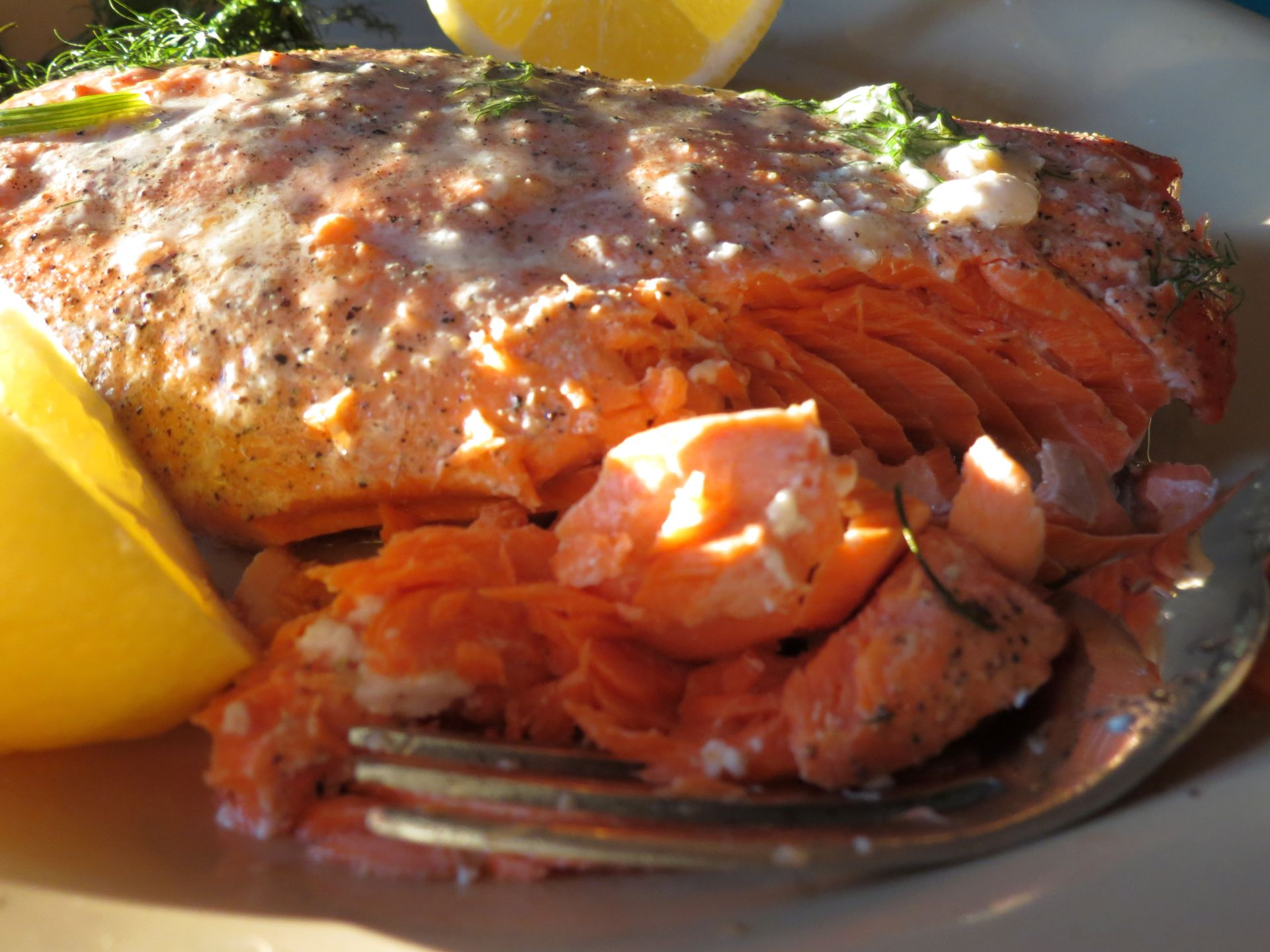 Salmon in the Oven - The Frugal Chef