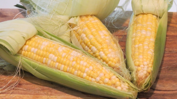 Freeze Corn