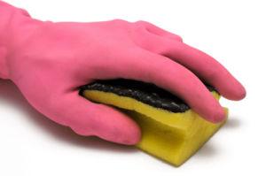 Glove and Sponge